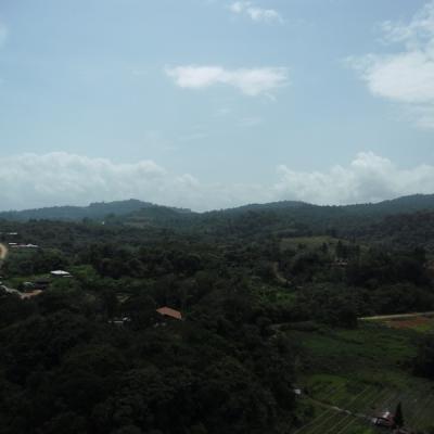 vue de l'antenne